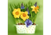 Servetele Paste - Narcise si panselute